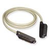 ICC ICPCSTMM10 10 ft Male to Male 25 Pair Amphenol Cable